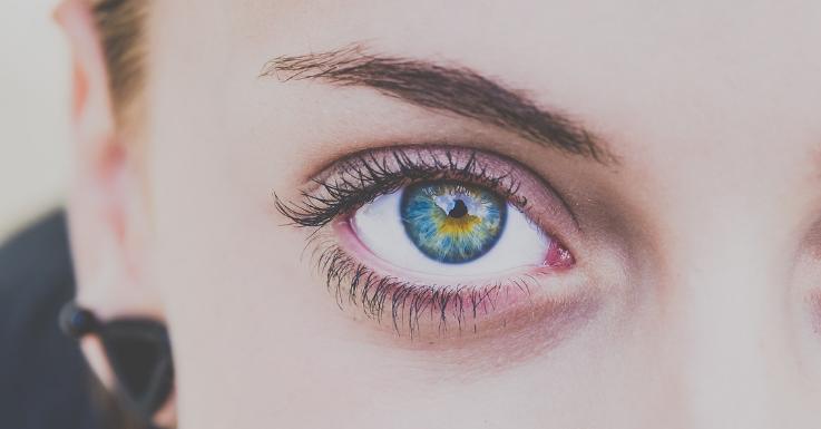 Das komplexeste aller Sinnesorgane: Das Auge fasziniert